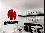 Magnum Tires - Recaufair